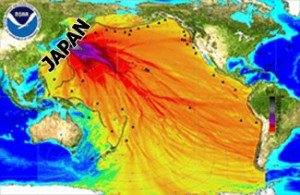 Radioactive Contamination of Pacific Fucoidan