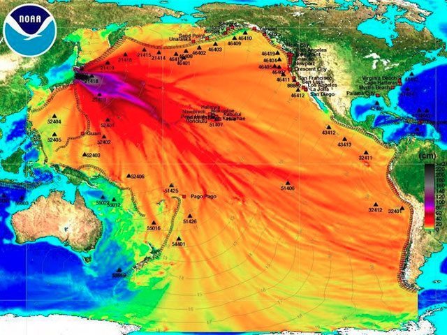 Fucoidan and the Fukushima Disaster